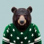 Asian-Black-Bear-Ursus-Thibetanus-650x650