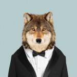 Gray-Wolf-Canis-Lupus-Lupus-copia-286x286