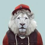 White-Transvaal-Lion-Panthera-Leo-Krugeri1