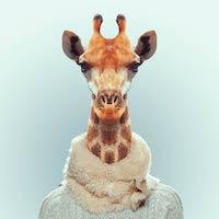 Zoo-Portraits-Yago-Partal-15