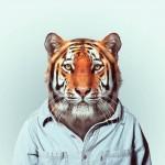 Zoo-Portraits-Yago-Partal-17